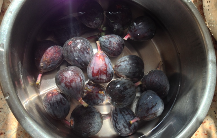 Figs being washed