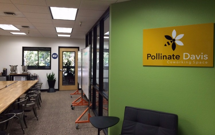 Pollinate Davis, through the front door