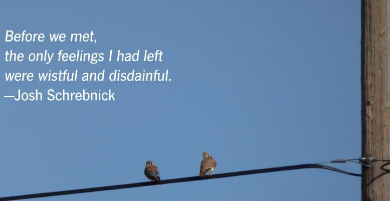 wistful+disdainful