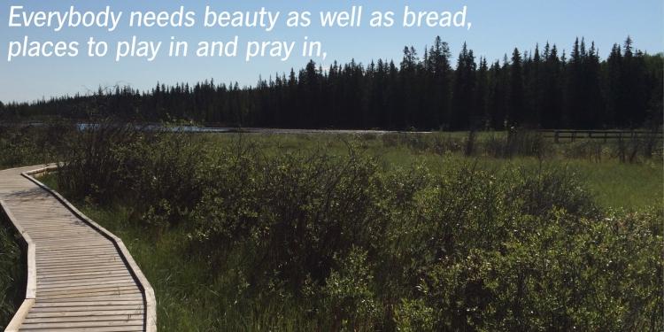 nature1