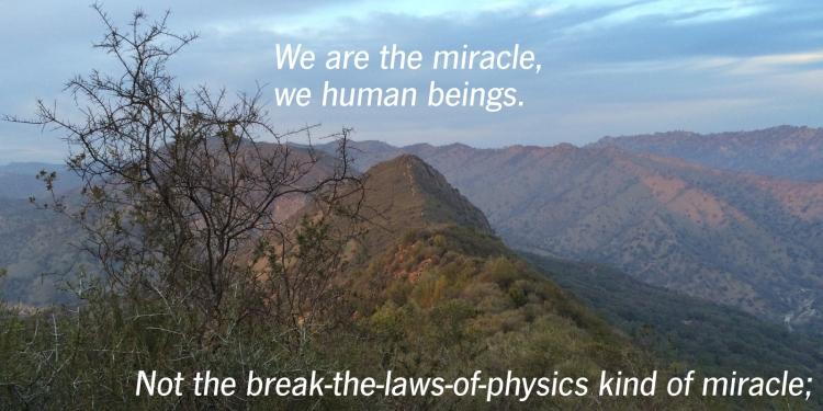 human-beings1