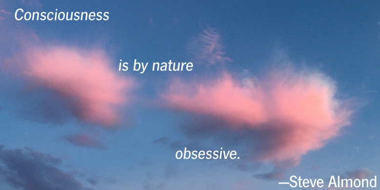 conscious-obsession-a