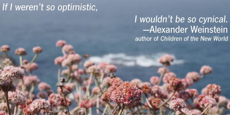 optimism-alt